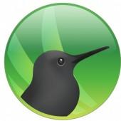 Roger Bird